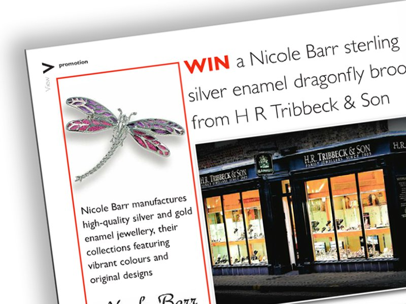 Win a Dragonfly Brooch